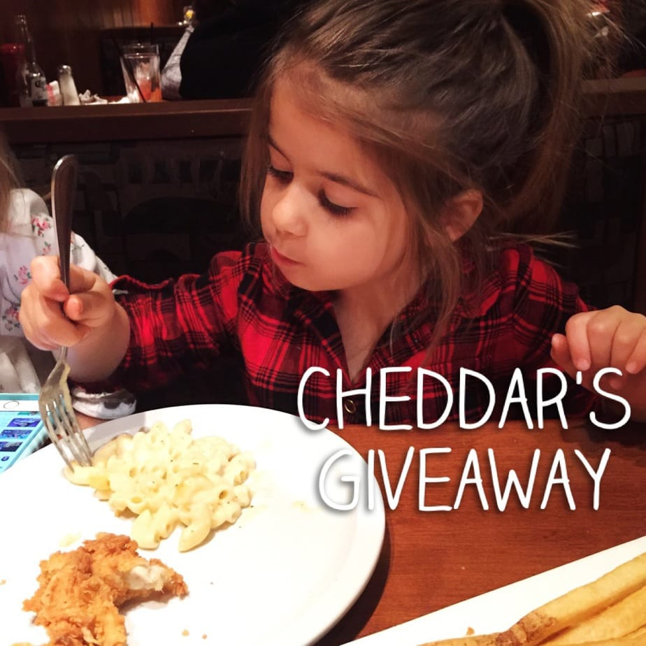 Mommy Time At Cheddar S Scratch Kitchen Giveaway The